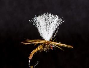 Klinhamar brun 2016